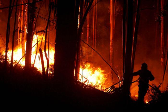 ΗΠΑ: Στους 87 οι νεκροί από την μεγάλη πυρκαγιά στην Καλιφόρνια